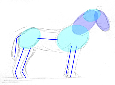 Ein Pferd Zeichnen Lernen